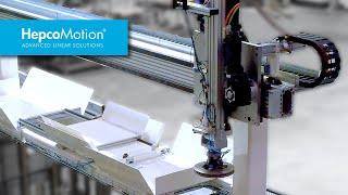 자동차 브레이크 디스크 제조 / HDS2 갠트리 시스템