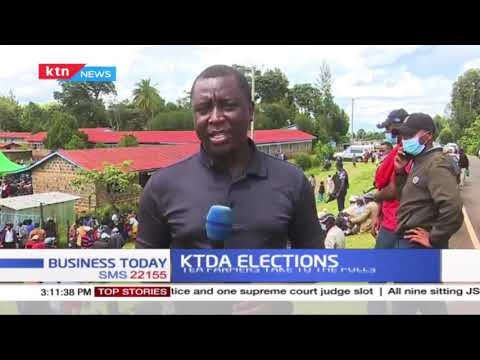 KTDA elections: Tea farmers take to the polls