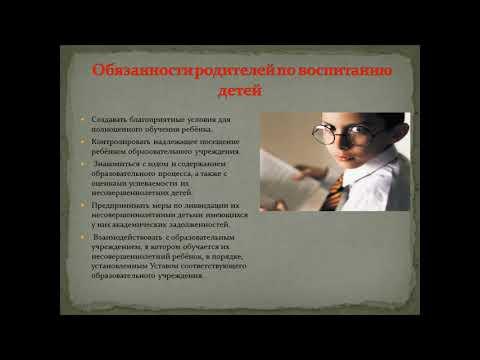 Основы системы профилактики безнадзорности и правонарушений несовершеннолетних