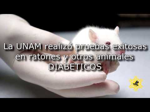 Aftas en los pies en la diabetes