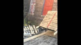 Video Nov 08, 2 46 18 PM - RYAO