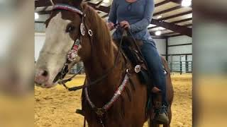Bossy, stiff ponies and how to fix them!