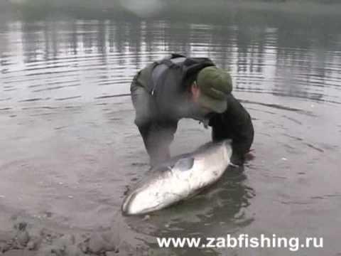 Krasnoyarsk che pesca nella città