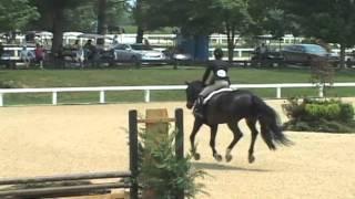 Country Heir I 15 - 17 Equitation