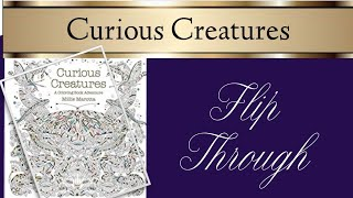 Curious Creatures Colouring Book Flip Through