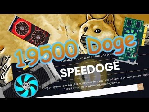 19500 Doge или обман??!!