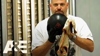 Storage Wars: Jarrod Bowls A Lucky Strike (Season 5, Episode 24) | A&E