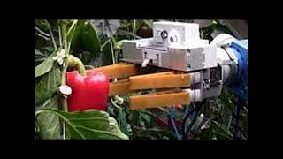 Роботы для огорода  Будущее уже рядом mp4