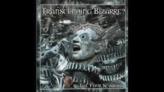 Transcending Bizarre? - Sattelite Souls/Dessicated