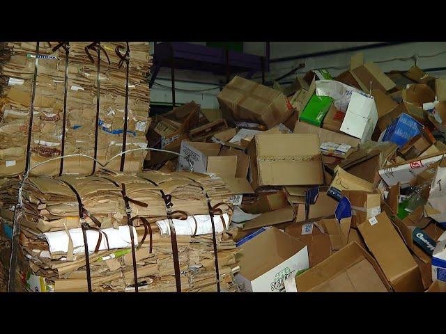 Как сортировать мусор и что такое эко-такси?