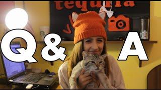 Intreab-o pe Tequila (Zu TV Q&A)