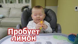 VLOG: Вова впервые пробует лимон