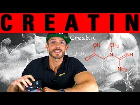 Creatin - Einnahme, Wirkung, Unterschiede (Kreatin)