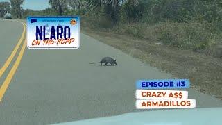 NLARO On The Road | S1E3 | Crazy A$$ Armadillos