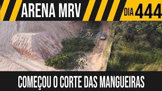 ARENA MRV | 8/8 COMEÇOU O CORTE DAS ÁRVORES | 08/07/2021