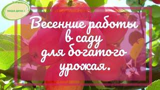 Организация весенних работ в саду в условиях Сибири для большого урожая. Часть 1. Ефимов Игорь