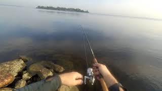 Ловля леща на фидер финский залив