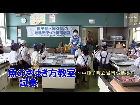 種子島の学校活動:岩岡小学校魚のさばき方教室カンパチの解体・トビウオのさばき方体験・試食令和2年