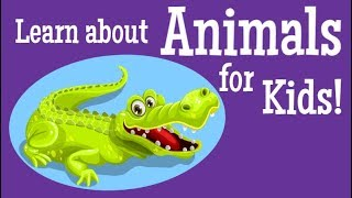 Learn about Animals for Kids!