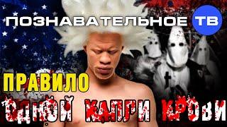 Правило одной капли крови (Познавательное ТВ, Дмитрий Михеев)