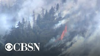 Cause Of Californias Apple Fire Determined