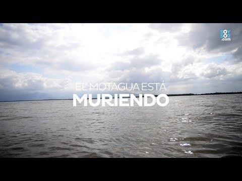 El Río Motagua está muriendo ¿Quién lo está matando?