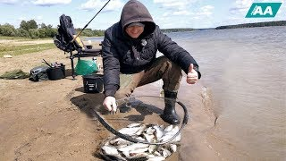 Место рыбалка на озернинском водохранилище