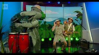 Mennään viidakkoon - Aarne Alligaatori Ylen aamu TV ssä