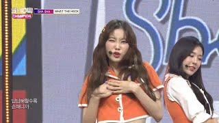 Show Champion EP.283 SHA SHA - What The Heck