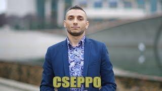 Aranyszemek Cseppó - Szikadasz mangé o trajo-Official ZGStudio video