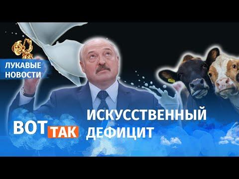Лукашенко оставил беларусов без молока / Лукавые новости видео