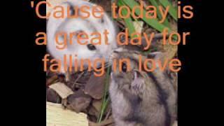 taio cruz- falling in love lyrics