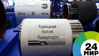 «Турецкий поток»: газопровод всеевропейского значения - МИР 24