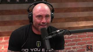 Joe Rogan Defends Radiolab