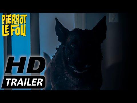 GROWL - Er riecht deine Angst   Trailer deutsch   Ab 07.05.2021 erhältlich!