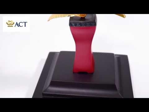 Chậu Lan Hồ Điệp 1 cành dát vàng size L 14x12x26cm