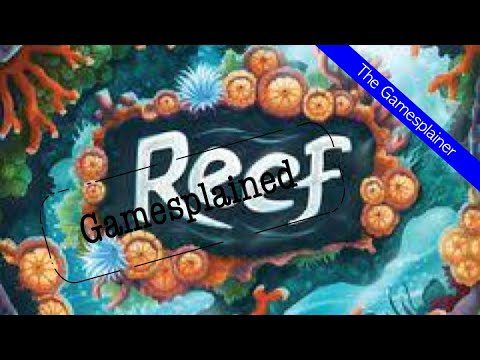 Reef Gamesplained - Part 1