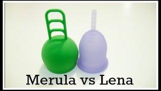 Merula cup vs Small Lena cup