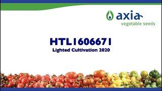 HTL1606671 2020