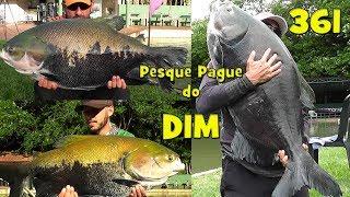 Programa Fishingtur na Tv 361 - Pesque Pague do DIM
