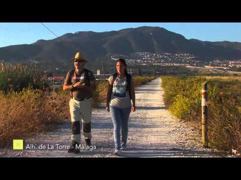 Der Große Wanderweg Málagas. Etappe 35: Alhaurín de la Torre - Málaga (Deutsch)