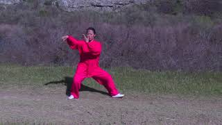 Tai Chi Quan: 24-Form Demonstration with Technique and Health Recommendations (in English)