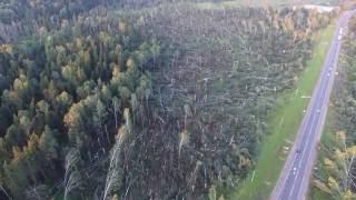 Последствия разрушительного урагана в Рузском районе, вид с высоты