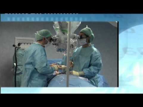 Legno pidocchio nel trattamento delle articolazioni