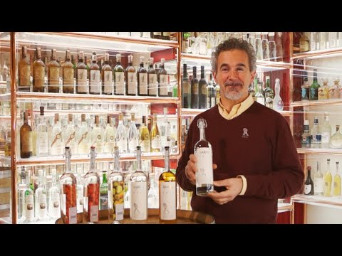 Differenze tra Grappa e acquavite - Jacopo Poli
