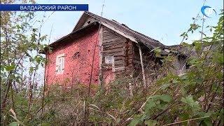 В Валдайском районе обнаружены останки советского генерала, место гибели которого было неизвестно