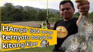 preview picture of video 'Wow... straik Banyak ikan kiper'