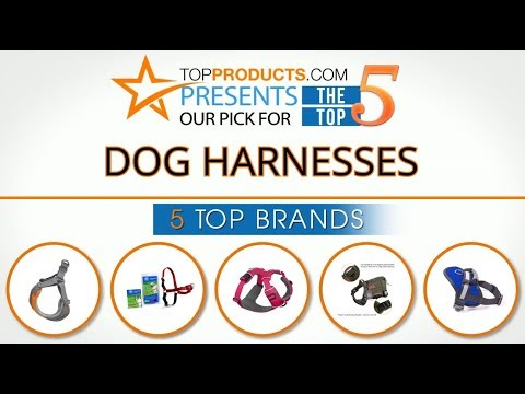 Best Dog Harness Reviews 2017 – How To Choose The Best Dog Harness