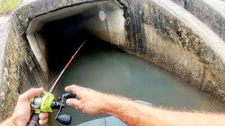 HUGE MYSTERY FISH on a BASS JIG! (Unexpected)