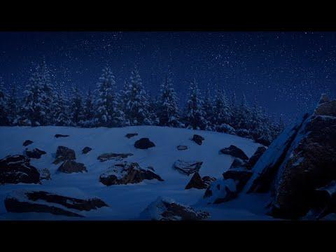 《寶可夢傳說 阿爾宙斯》前瞻影片「洗翠地區的記錄影片」正式公開